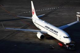 安芸あすかさんが、羽田空港で撮影した日本航空 737-846の航空フォト(飛行機 写真・画像)