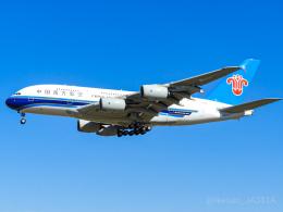 池さん@JA381Aさんが、成田国際空港で撮影した中国南方航空 A380-841の航空フォト(飛行機 写真・画像)