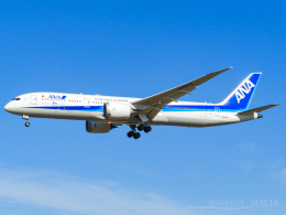 池さん@JA381Aさんが、成田国際空港で撮影した全日空 787-9の航空フォト(飛行機 写真・画像)
