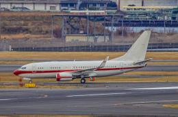 rokko2000さんが、羽田空港で撮影したホンコン・ジェット 737-7KK BBJの航空フォト(飛行機 写真・画像)