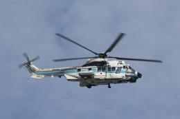 ショウさんが、東京ヘリポートで撮影した海上保安庁 EC225LP Super Puma Mk2+の航空フォト(飛行機 写真・画像)