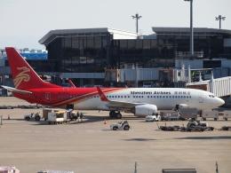 FT51ANさんが、成田国際空港で撮影した深圳航空 737-87Lの航空フォト(飛行機 写真・画像)
