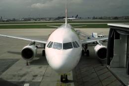 Hiro-hiroさんが、リスボン・ウンベルト・デルガード空港で撮影したTAPポルトガル航空 A330-200の航空フォト(飛行機 写真・画像)