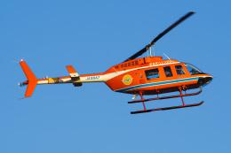 さんごーさんが、東京ヘリポートで撮影した新日本ヘリコプター 206L-3 LongRanger IIIの航空フォト(飛行機 写真・画像)