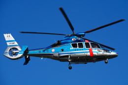 さんごーさんが、東京ヘリポートで撮影した警視庁 EC155B1の航空フォト(飛行機 写真・画像)