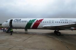 Hiro-hiroさんが、リスボン・ウンベルト・デルガード空港で撮影したポルトガリア航空 100の航空フォト(飛行機 写真・画像)