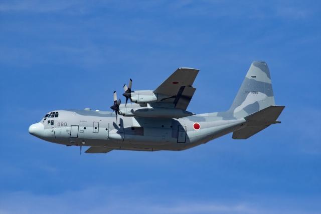 Mochi7D2さんが、岐阜基地で撮影した航空自衛隊 C-130H Herculesの航空フォト(飛行機 写真・画像)