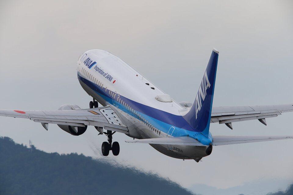 khideさんの全日空 Boeing 737-800 (JA83AN) 航空フォト