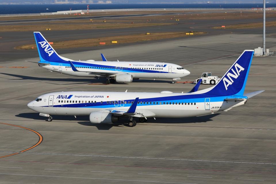 わんだーさんの全日空 Boeing 737-800 (JA55AN) 航空フォト