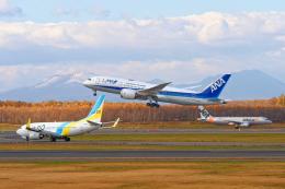 監督さんが、新千歳空港で撮影した全日空 787-8 Dreamlinerの航空フォト(飛行機 写真・画像)