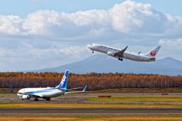 監督さんが、新千歳空港で撮影した日本航空 737-846の航空フォト(飛行機 写真・画像)