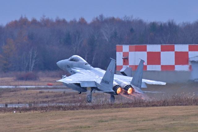 監督さんが、千歳基地で撮影した航空自衛隊 F-15J Eagleの航空フォト(飛行機 写真・画像)