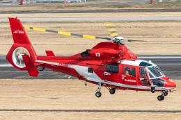 T spotterさんが、名古屋飛行場で撮影した名古屋市消防航空隊 AS365N3 Dauphin 2の航空フォト(飛行機 写真・画像)