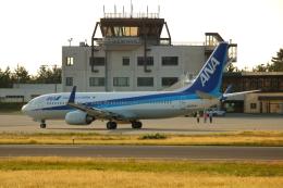 ▲®さんが、庄内空港で撮影した全日空 737-881の航空フォト(飛行機 写真・画像)