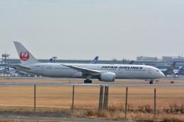 アルビレオさんが、成田国際空港で撮影した日本航空 787-9の航空フォト(飛行機 写真・画像)