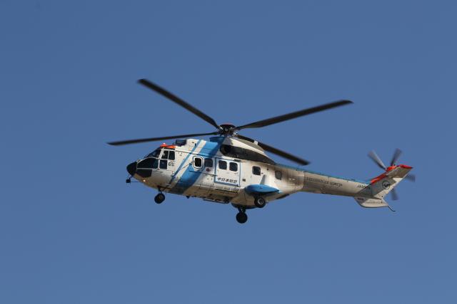 ショウさんが、名古屋飛行場で撮影した中日本航空 AS332L1 Super Pumaの航空フォト(飛行機 写真・画像)