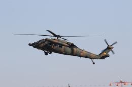 ショウさんが、名古屋飛行場で撮影した陸上自衛隊 UH-60JAの航空フォト(飛行機 写真・画像)
