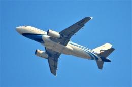 amagoさんが、スワンナプーム国際空港で撮影したバンコクエアウェイズ A319-132の航空フォト(飛行機 写真・画像)