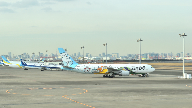 ライトレールさんが、羽田空港で撮影したAIR DO 767-381の航空フォト(飛行機 写真・画像)