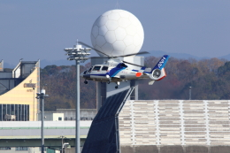 kaz787さんが、伊丹空港で撮影したオールニッポンヘリコプター AS365N2 Dauphin 2の航空フォト(飛行機 写真・画像)