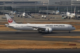 SIさんが、羽田空港で撮影した日本航空 787-9の航空フォト(飛行機 写真・画像)