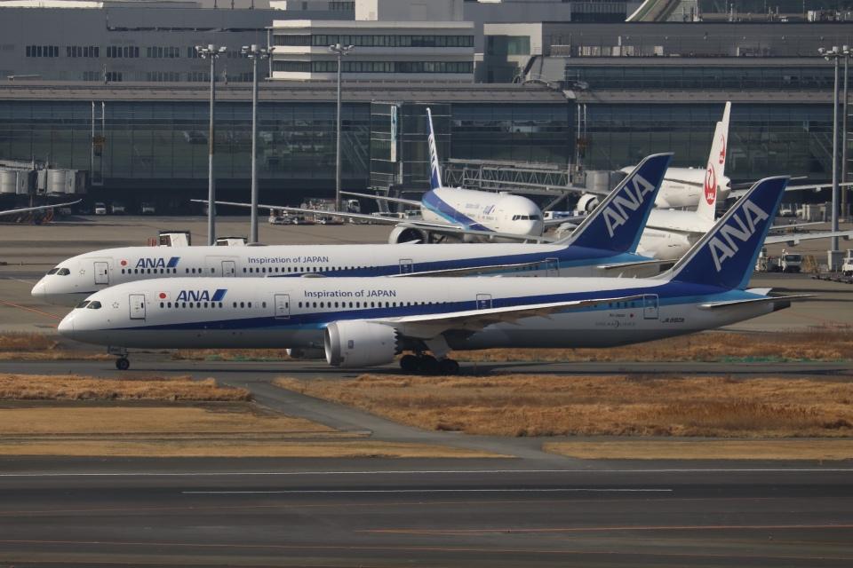 SIさんの全日空 Boeing 787-9 (JA880A) 航空フォト