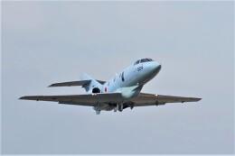 土岐のjunkoさんが、名古屋飛行場で撮影した航空自衛隊 U-125A(Hawker 800)の航空フォト(飛行機 写真・画像)
