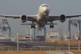 VIPERさんが、羽田空港で撮影した日本航空 787-8 Dreamlinerの航空フォト(飛行機 写真・画像)