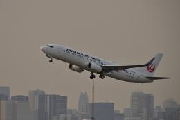 監督さんが、羽田空港で撮影した日本航空 737-846の航空フォト(飛行機 写真・画像)