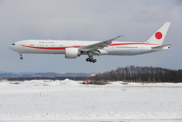 安芸あすかさんが、千歳基地で撮影した航空自衛隊 777-3SB/ERの航空フォト(飛行機 写真・画像)