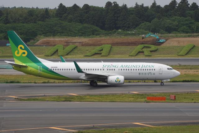 神宮寺ももさんが、成田国際空港で撮影した春秋航空日本 737-8ALの航空フォト(飛行機 写真・画像)