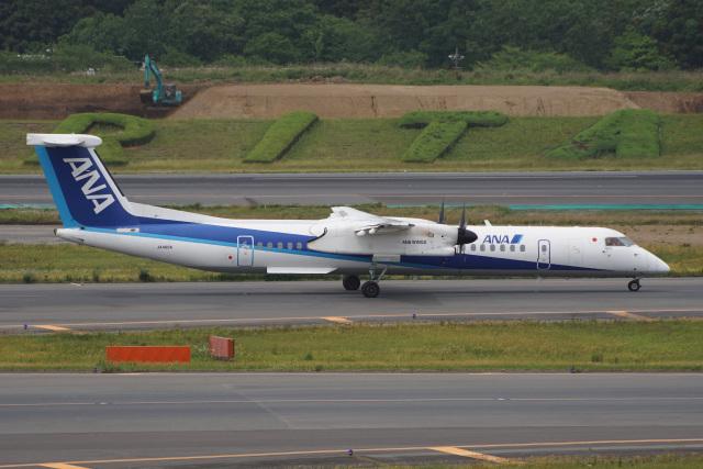 神宮寺ももさんが、成田国際空港で撮影したANAウイングス DHC-8-402Q Dash 8の航空フォト(飛行機 写真・画像)