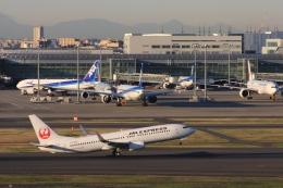 Hiro-hiroさんが、羽田空港で撮影したJALエクスプレス 737-846の航空フォト(飛行機 写真・画像)
