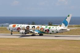 Deepさんが、石垣空港で撮影した全日空 767-381の航空フォト(飛行機 写真・画像)