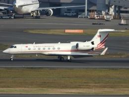 チャレンジャーさんが、羽田空港で撮影したトルコ政府 G-V-SP Gulfstream G550の航空フォト(飛行機 写真・画像)