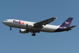 木人さんが、成田国際空港で撮影したフェデックス・エクスプレス A300F4-605Rの航空フォト(飛行機 写真・画像)
