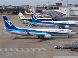 FT51ANさんが、福岡空港で撮影した全日空 737-8ALの航空フォト(飛行機 写真・画像)