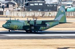 T spotterさんが、名古屋飛行場で撮影した航空自衛隊 C-130H Herculesの航空フォト(飛行機 写真・画像)