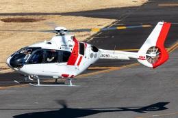 T spotterさんが、名古屋飛行場で撮影した中日本航空 EC135P3の航空フォト(飛行機 写真・画像)