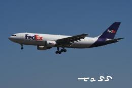 tassさんが、成田国際空港で撮影したフェデックス・エクスプレス A300F4-605Rの航空フォト(飛行機 写真・画像)