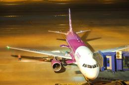 WAiRさんが、中部国際空港で撮影したピーチ A320-214の航空フォト(飛行機 写真・画像)