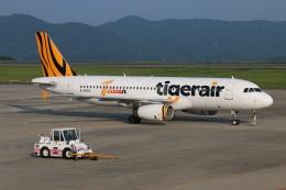 ニヤンさんが、岡山空港で撮影したタイガーエア台湾 A320-232の航空フォト(飛行機 写真・画像)
