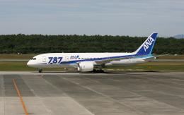 asuto_fさんが、熊本空港で撮影した全日空 787-8 Dreamlinerの航空フォト(飛行機 写真・画像)
