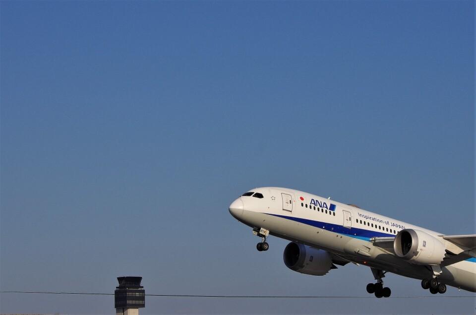 mild lifeさんの全日空 Boeing 787-8 Dreamliner (JA874A) 航空フォト