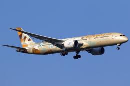 こだしさんが、成田国際空港で撮影したエティハド航空 787-9の航空フォト(飛行機 写真・画像)