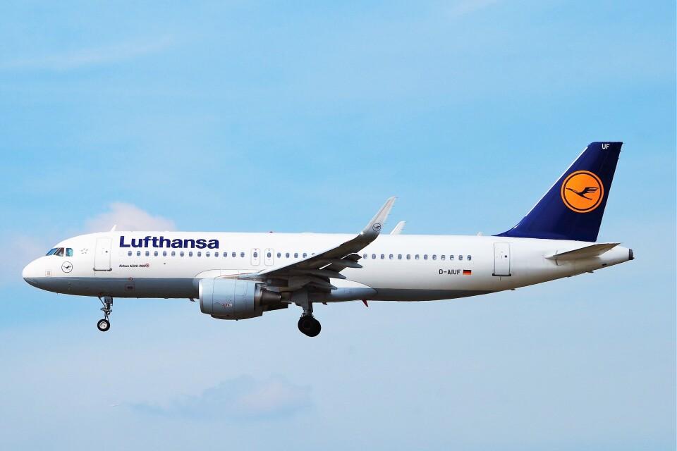 ちっとろむさんのルフトハンザドイツ航空 Airbus A320 (D-AIUF) 航空フォト