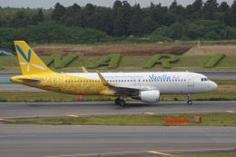 神宮寺ももさんが、成田国際空港で撮影したバニラエア A320-214の航空フォト(飛行機 写真・画像)