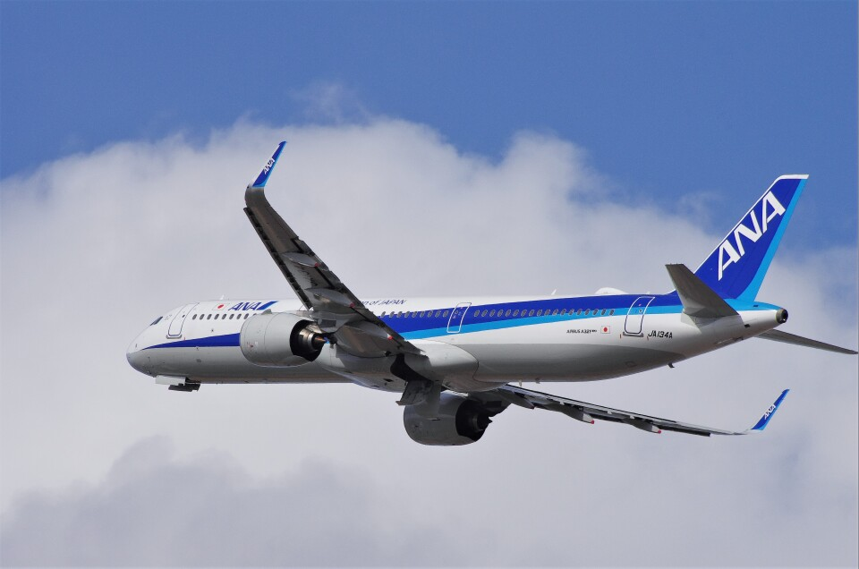 mild lifeさんの全日空 Airbus A321neo (JA134A) 航空フォト