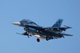 土岐のjunkoさんが、岐阜基地で撮影した航空自衛隊 F-2Bの航空フォト(飛行機 写真・画像)