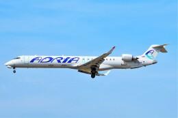 ちっとろむさんが、フランクフルト国際空港で撮影したアドリア航空 CL-600-2D24 Regional Jet CRJ-900 NextGenの航空フォト(飛行機 写真・画像)